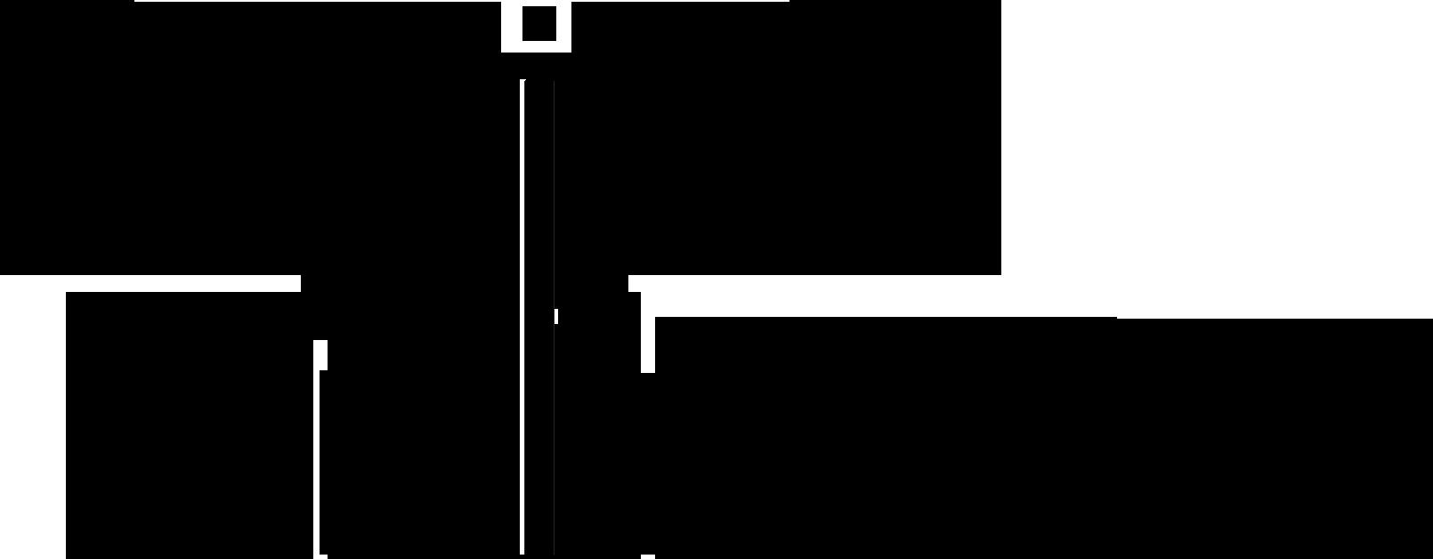 Digital Universe Logo Black Transparent
